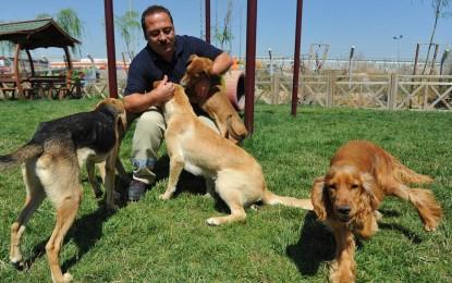 Evcil Hayvan Ticaretinde Sertifika Dönemi