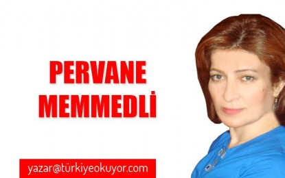 Türk dili artıq dünya dili olma yolunda