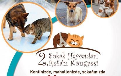 2. Sokak Hayvanları Refahı Kongresi Nilüfer'de yapılacak