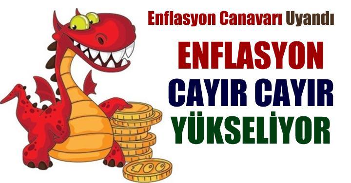 enflasyon-canavari-720x376