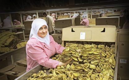Yemen'den kahve değil, ihracat rekoru geldi