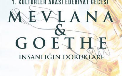 Mevlana ve Goethe Celsus Kütüphanesi'nde buluşacak