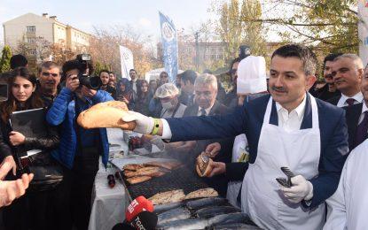 Tüm bakanlıklar Türk balıklarının tüketimini arttırmak için seferber oldu