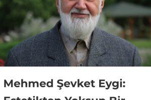 Mehmed Şevket Eygi: Estetikten Yoksun Bir İslam Toplumu Ayakta Kalamaz